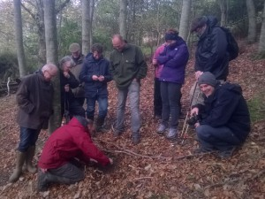 Truffle Hunting in England