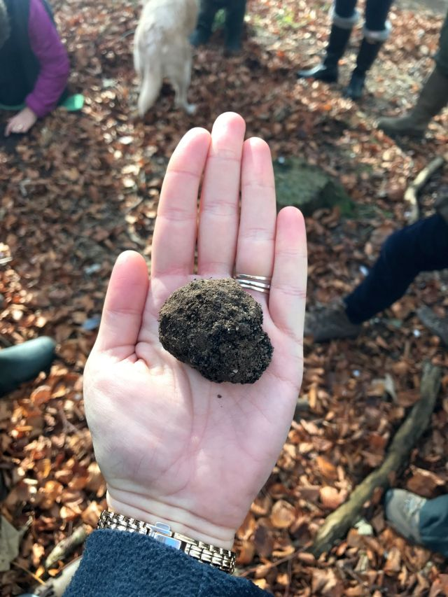 Very handy to find such good truffles!