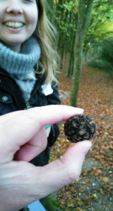 Not the biggest but a beautiful truffle.