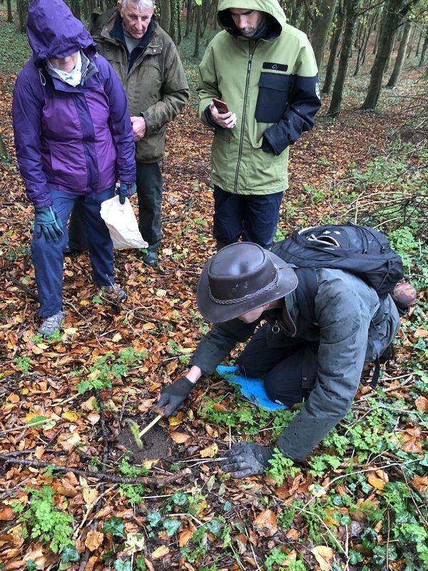 Gently excavating the truffle