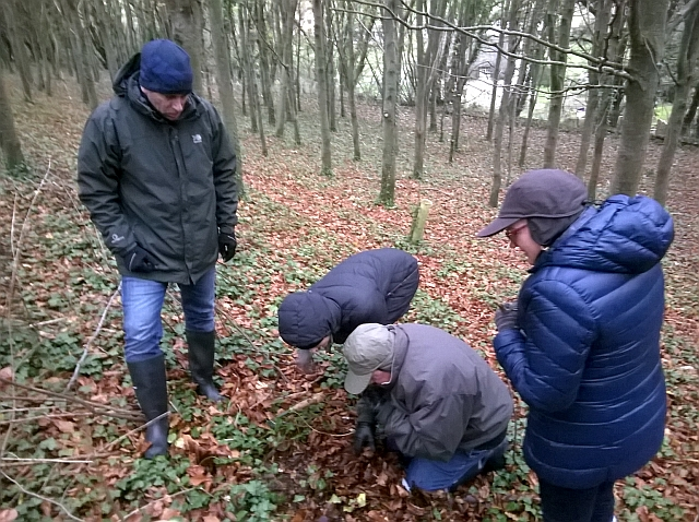 A private truffle hunt