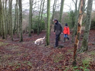 Following the truffle hound