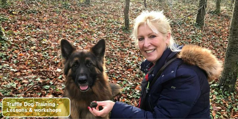 The English Truffle Company - Truffle Dog Training - lesson, workshops, aids, books