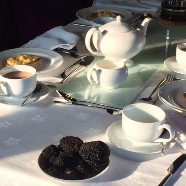 Afternoon tea on one of our truffle hunts