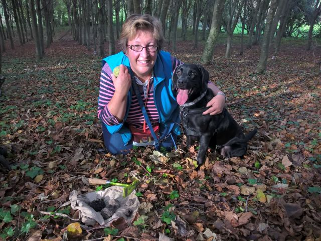 Woodland Lesson - Sarah with Black Lab Daisy and 5 truffles they found - 3 corkers!