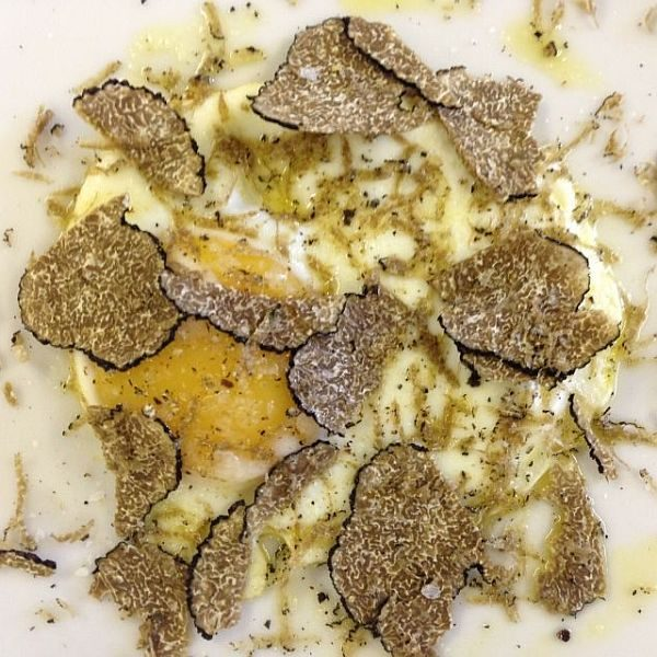 Shaved truffle on an egg dish