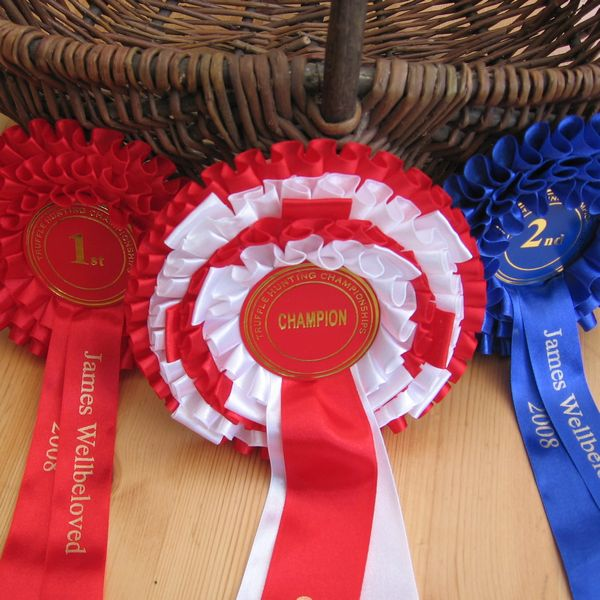 In 2008 we won the UK truffle hunting championships.